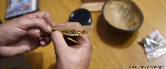 weed amsterdam