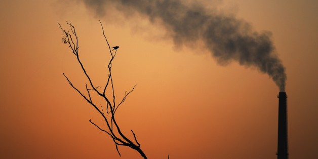 A crow sits on a dead tree and smoke emits from the chimney of a factory as the sun sets in New Delhi, India, Tuesday, Sept. 23, 2014. United Nations Secretary-General Ban Ki-Moon is challenging more than 100 world leaders at a climate summit to set a new course for a warming world and reverse the rise of heat-trapping gases. (AP Photo/Altaf Qadri)