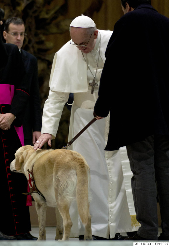 francis pope dog