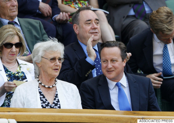 david cameron mother