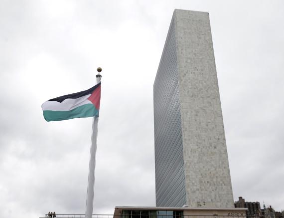 flag palestine un