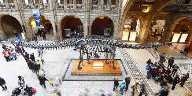 La fin des dinosaures ne serait pas seulement due à une météorite