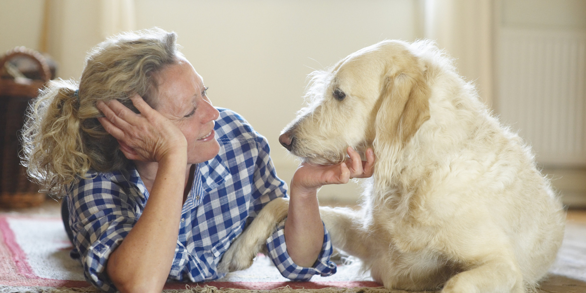 The Ultimate Guide for Pet Sitters
