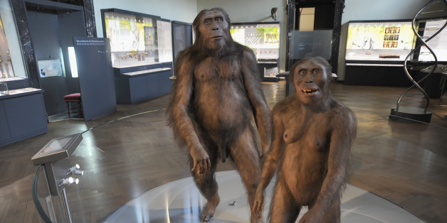 VIENNA, AUSTRIA - SEPTEMBER 29:  The figures of Homo Sapiens are displayed during the Naturhistorisches Museum presents new archaeological discoveries at Naturhistorisches Museum on September 29, 2015 in Vienna, Austria.  (Photo by Manfred Schmid/Getty Images)