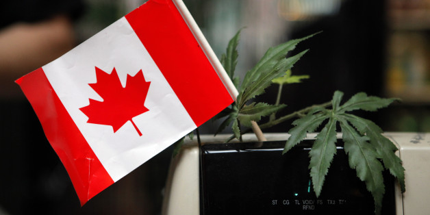 New Canadian Prime Minster Plans to Legalize Marijuana