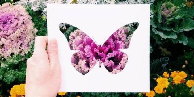 Des silhouettes en papier et la nature suffisent à cet artiste russe pour créer de magnifiques images