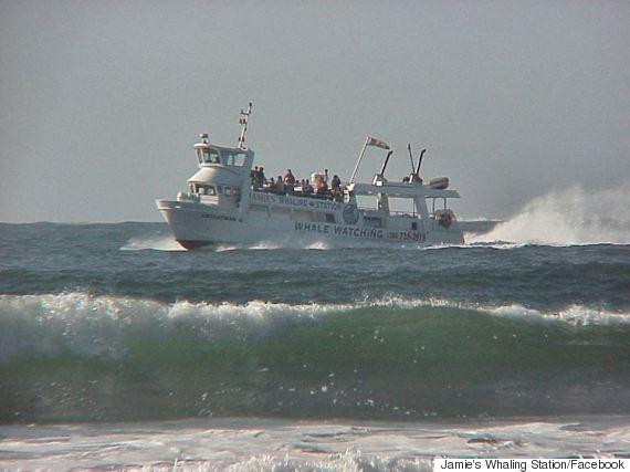 leviathan ii tofino boat