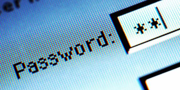 Password field on computer screen, detail