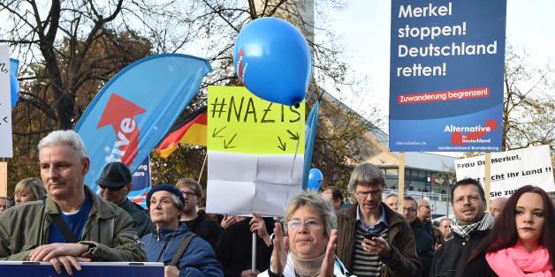 Auf diesem Bild einer AfD-Demonstration ist ein Fehler versteckt