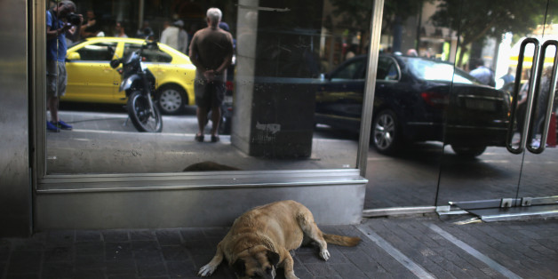 ATHENS, GREECE - JULY 06:  A dog sleeps outside the Greek Finance Minstry in the wake of Yanis Varoufakis resigning this morning on July 6, 2015 in Athens, Greece. Politicians in Europe and Greece are planning emergency talks after Greek voters rejected EU proposals to pay back it's creditors creating an uncertain future for Greece.  (Photo by Christopher Furlong/Getty Images)
