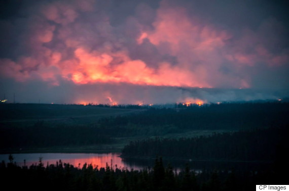 newfoundland forst fire