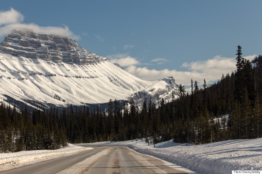 icefield parkway winter