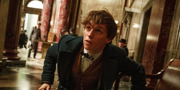 Daniel Radcliff scherzt über das neue Harry Potter-Spin-off.