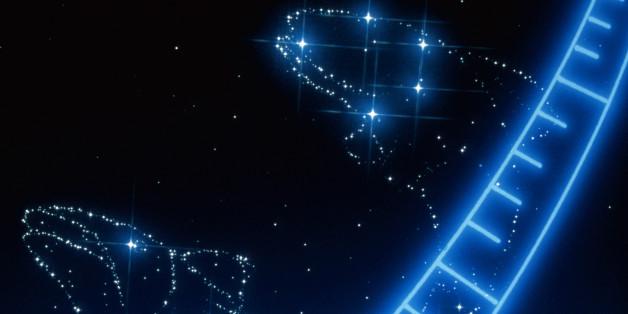 Das Sternzeichen Fische ist das zwölfte und letzte Sternzeichen im Tierkreislauf.