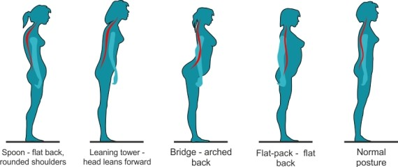 Image result for improve posture women
