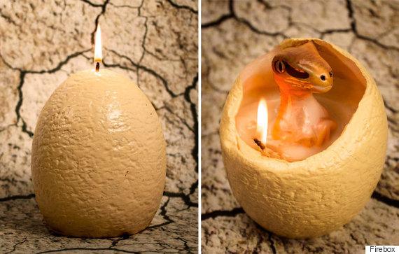 raptor candle