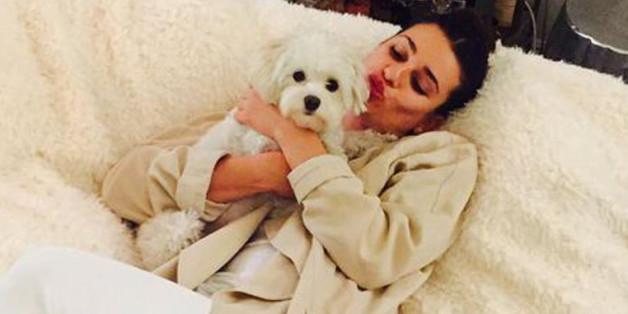 """""""Glee""""-Star Lea Michele würde diesen süßen Hund gerne behalten."""