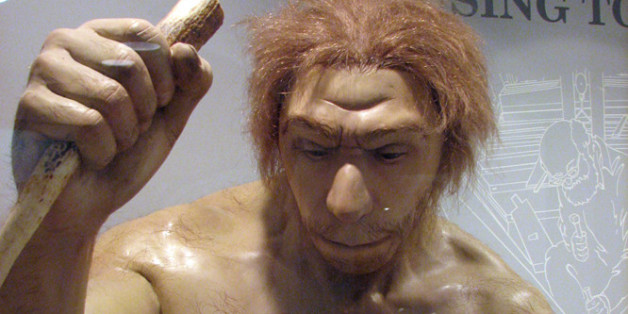 Sculpture of a Neanderthal man from the Ancestors exhibit at the Maxwell Museum of Anthropology, University of New Mexico