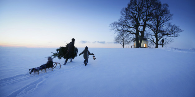 Father with two children carrying Christmas tree through snow, Degerndorf, Munsing, Upper Bavaria, Germany
