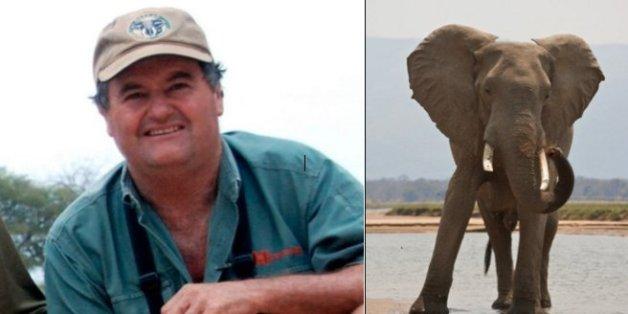 Gibson wurde von einem Elefanten getötet