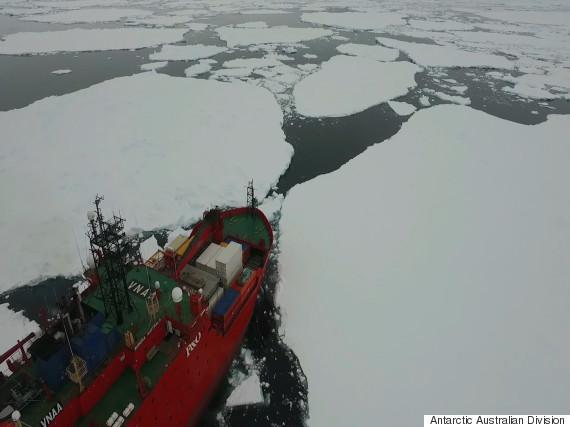 antarctica casey station