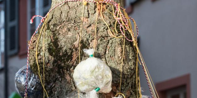 """Anna Bonath hängt in Offenburg (Baden-Württemberg) Geschenke an einem Baum, den """"Warmnachtsbaum"""""""