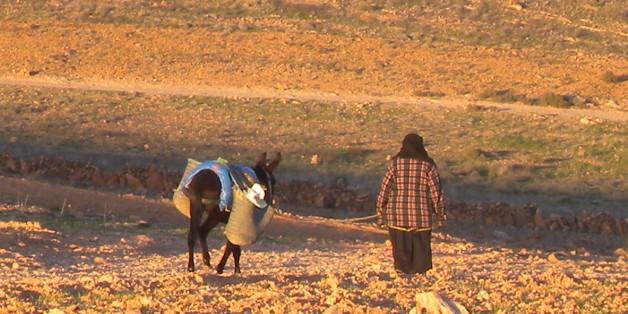 Au Maroc, la sécheresse pointe le bout de son nez