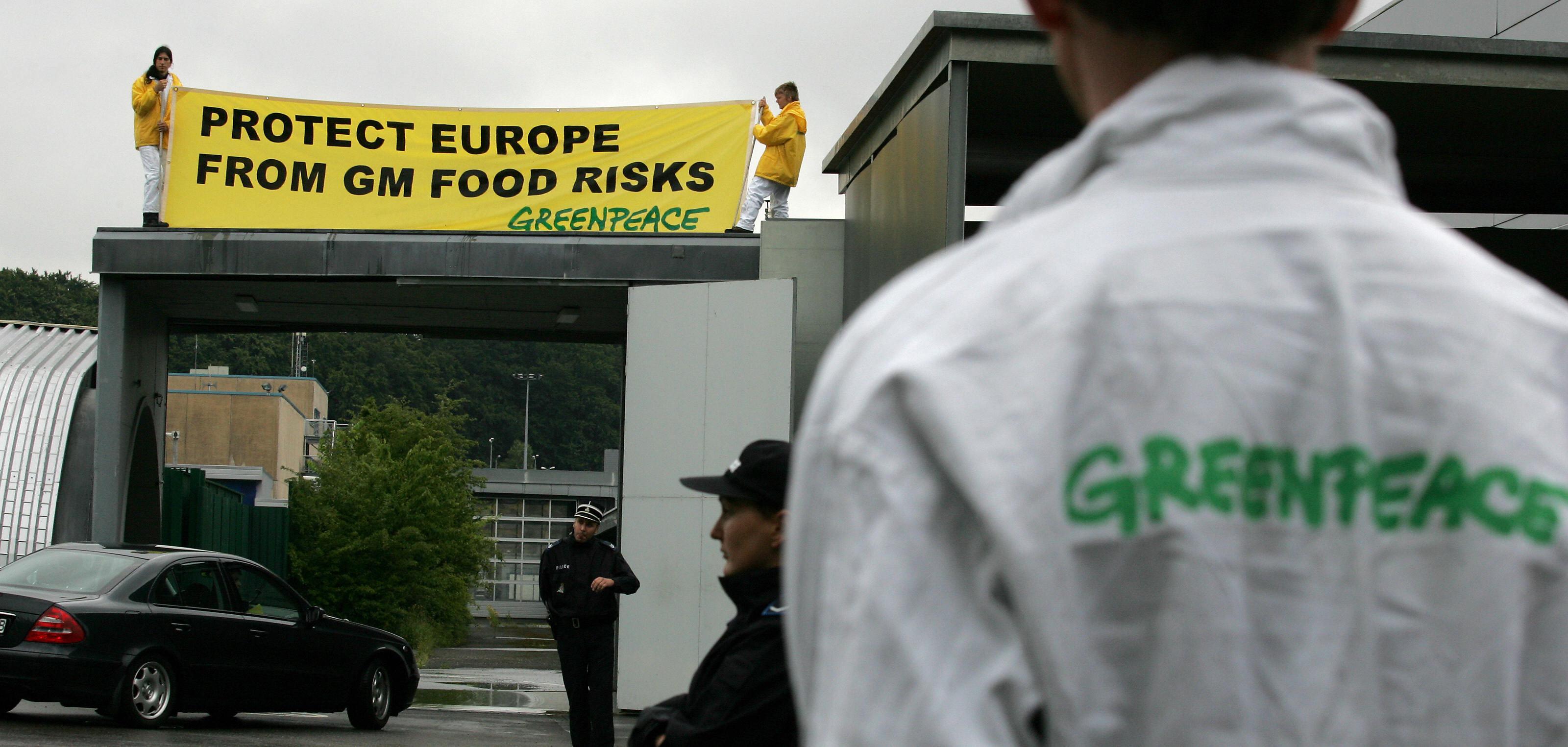 greenpeace gmo