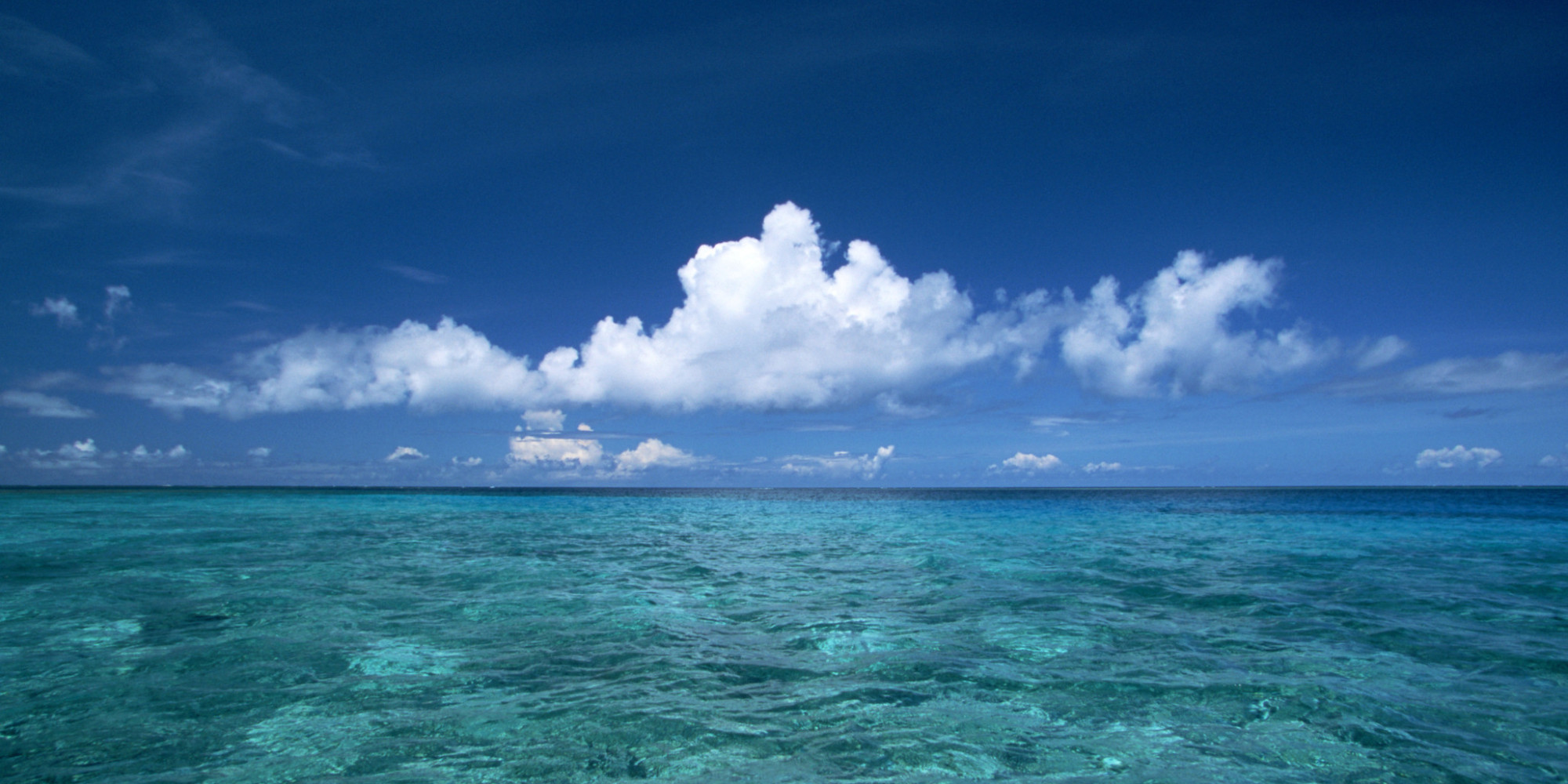 what 39 s the future of ocean conservation huffpost
