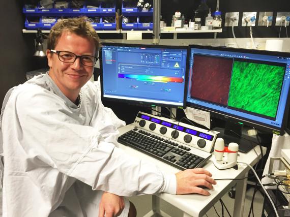 dr paul timpson biosensor mouse