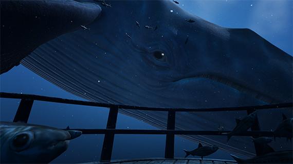 blue whale vive