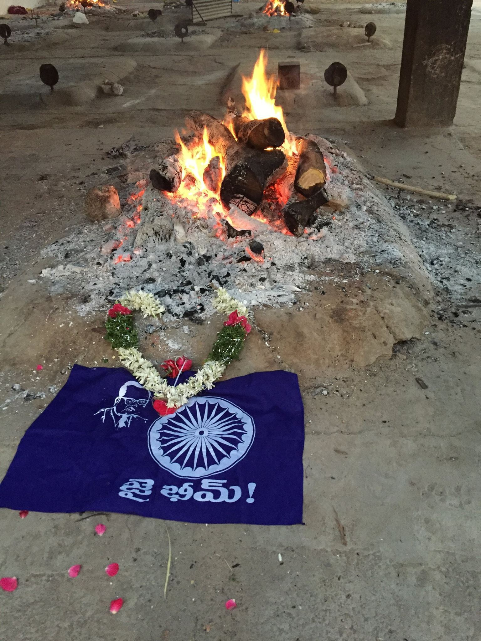 remains of rohith