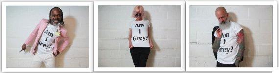 grey model