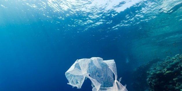 Après le Maroc, la Tunisie et l'Algérie interdiront-ils les sacs plastiques?