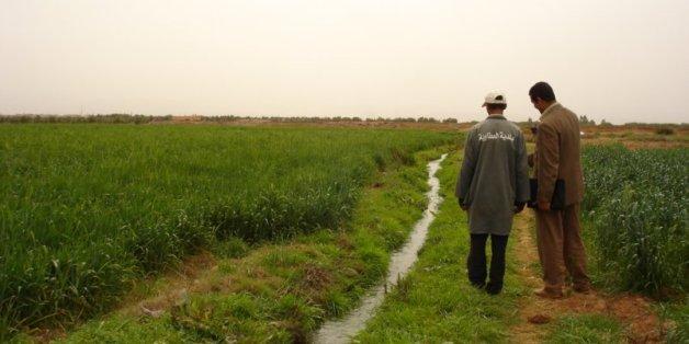 Ce que le gouvernement prévoit pour lutter contre la sécheresse