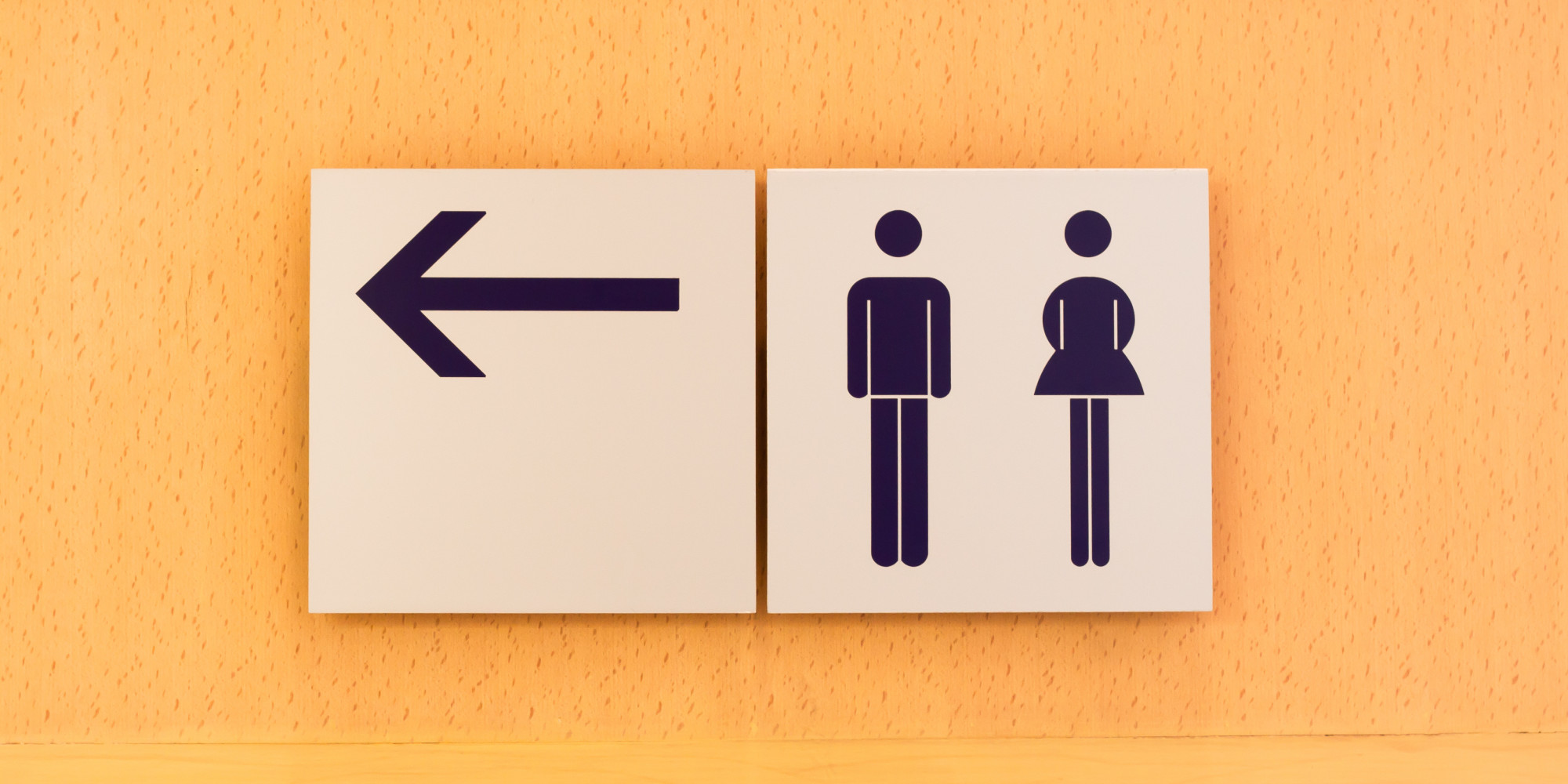 . 10 Steps to Winning the Transgender Bathroom  Debate    HuffPost