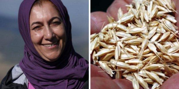 Trois Marocaines récompensées à Marrakech pour leurs actions en faveur de l'environnement