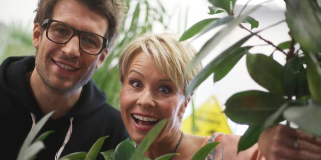 Bert Wollersheim kündigt an, ins Dschungelcamp ziehen zu wollen