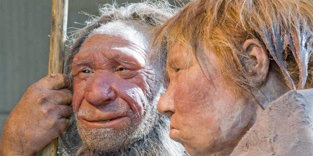 "FILE - The March 20, 2009 file photo shows the prehistoric Neanderthal man ""N"", left, as he is visited for the first time by another reconstruction of a homo neanderthalensis called ""Wilma"", right, at the Neanderthal museum in Mettmann, Germany. The world famous  fossil ""N"" is estimated being about 40.000 years old; ""Wilma"" was built by Dutch artists Alfons and Adrie Kennis for the National Geographic magazine on a skeleton from the American museum of natural history in New York. Theories about"