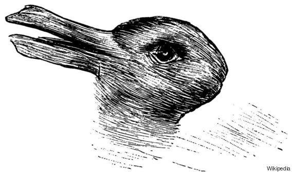 Anatra O Coniglio Quello Che Vedi In Questa Immagine Dice Molto