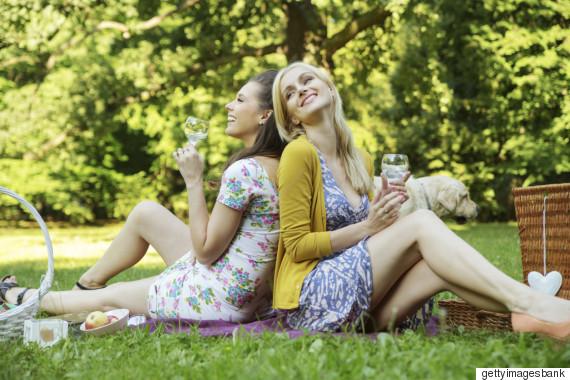 picnicfriendps
