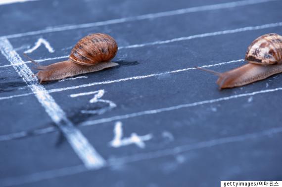 snailmoneyps