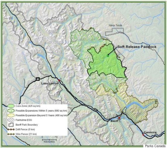 bison map