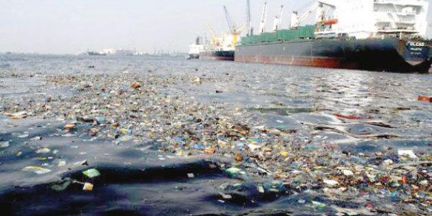 Les détails sur la proposition de loi sur les dégâts environnementaux