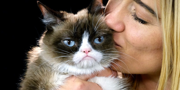 This Dec. 1, 2015 photo shows Grumpy Cat with her owner Tabitha Bundesen during an interview at the Associated Press in Los Angeles. Animals can melt the human heart, tickle the funny bone or bring us to tears. All you have to do is follow, like or pin them. There is no end to the number of online animals - from YouTube to www.explore.org and all the social media sites in between. Nobody was busier than Grumpy Cat in 2015. (AP Photo/Richard Vogel)