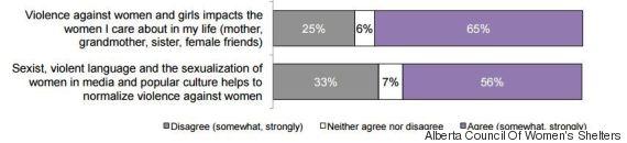violence against women study