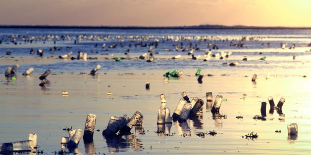 Mit diesem entscheidenden Schritt kämpft Montral gegen die Umweltverschmutzung