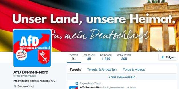 Ein Screenshot des scheinbaren AfD-Twitter-Kanals.