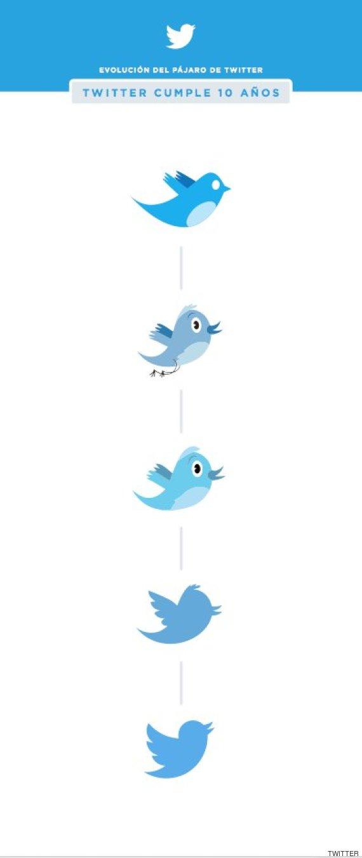 pajaro twitter evolucion