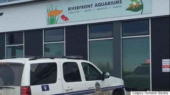 riverfront aquariums